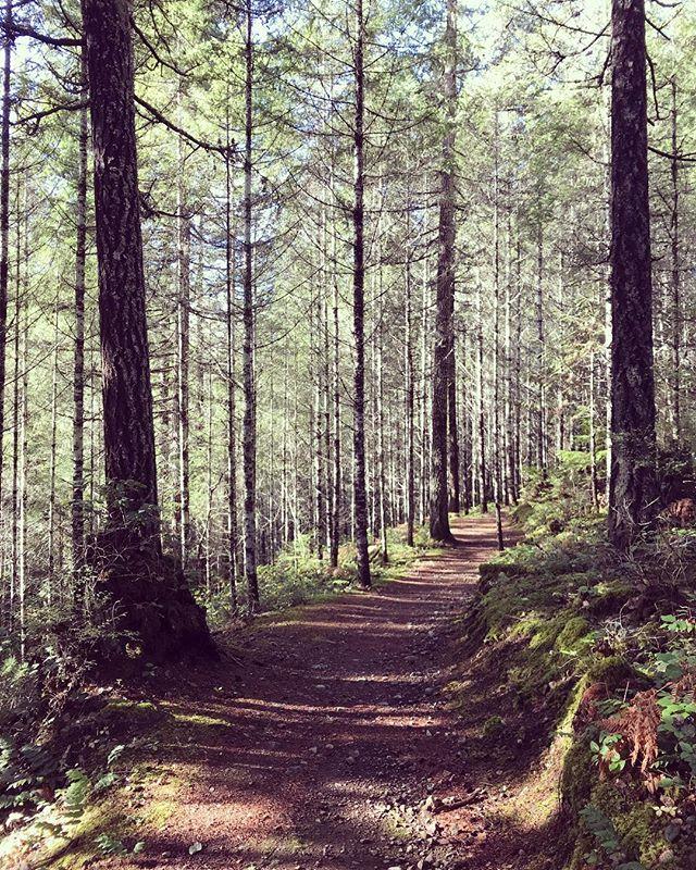 Sunday nature break 🍃🍂🍃🍂🍃 #himmeli #home #modern #nordic #scandinavian #scandinaviandesign #modernmobile #art #mcm #midcenturymodern #modernhome #interiordesign #designermaker #artisan #design #brass  #tillandsia #airplant  #shoplocal #geometricdecor #geometric #etsy #pnw  #westcoast  #hiking #getoutside #toomanyhimmelis #takeabreak