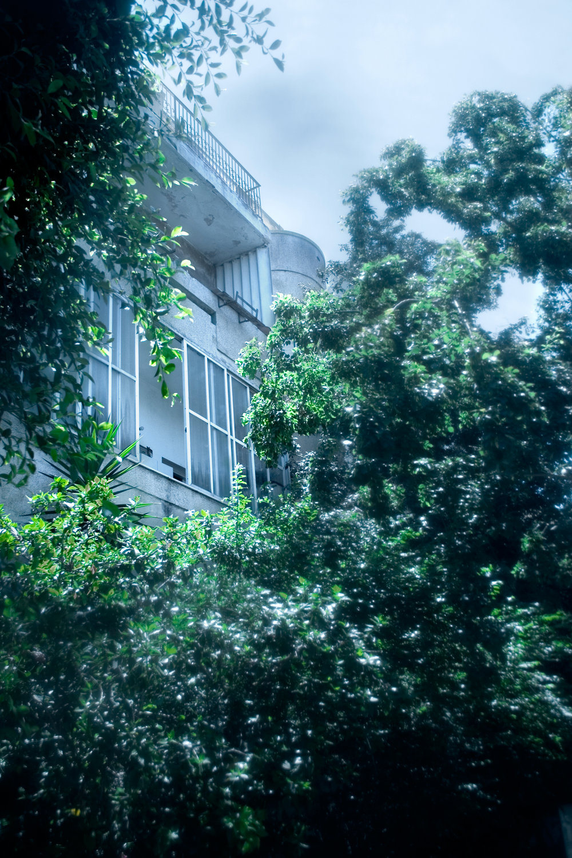 9. 20-Shlomo-Hameleh-Street.jpg