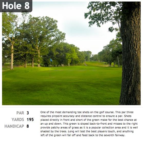 hole8.jpeg