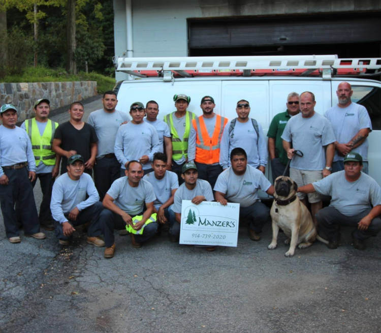 The crew from Manzers Landscaping in Westchester County, NY