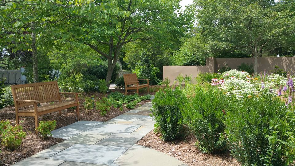Planting for Adding High Texture to Your Cortlandt Manor Landscape Design