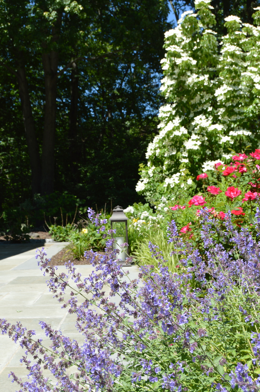 5 Top Flower Bed Ideas To Beautify Your Cortlandt Ny Landscape
