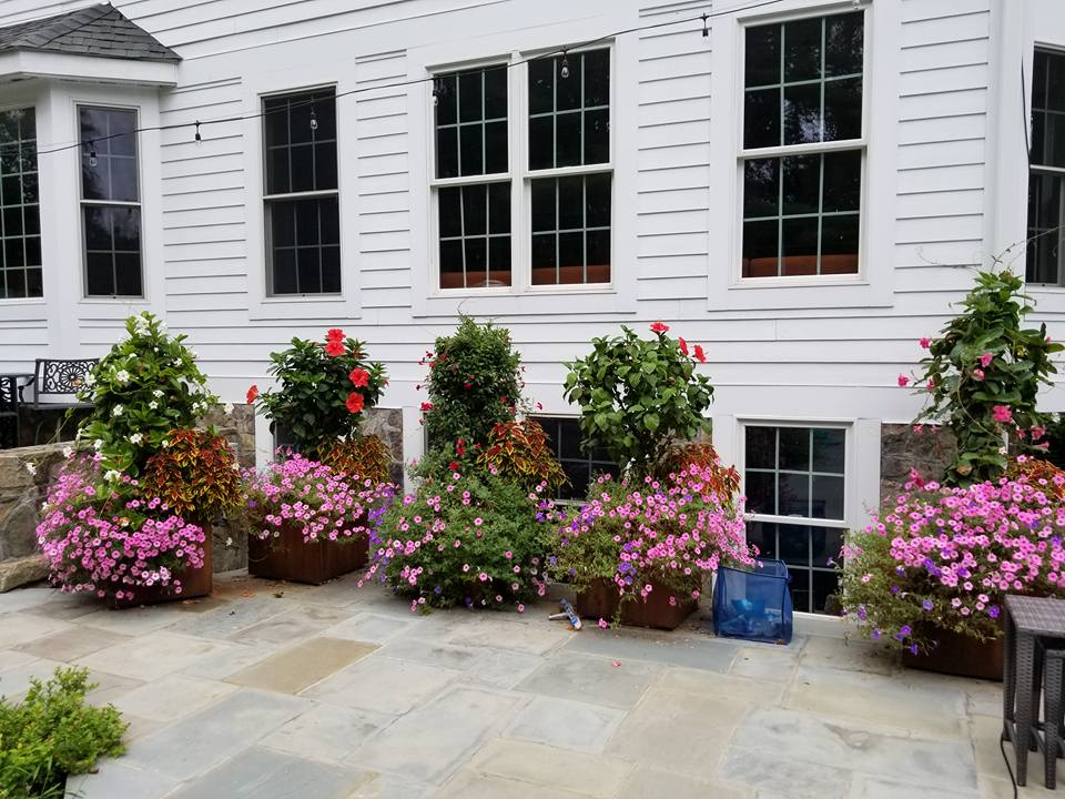 Landscape Company's Tips for Beautiful Container Gardening in Somers, NY