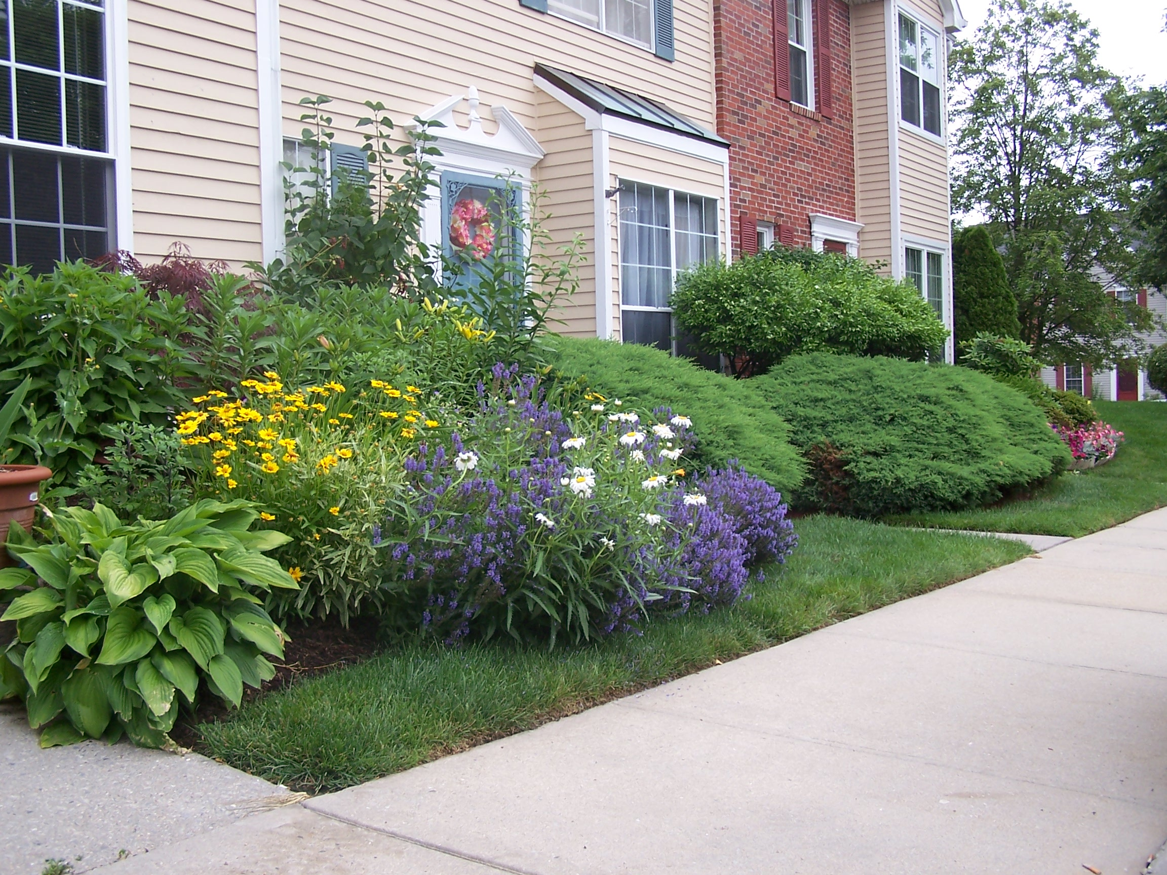 Brightening Your Landscape Design With Fall Perennials In