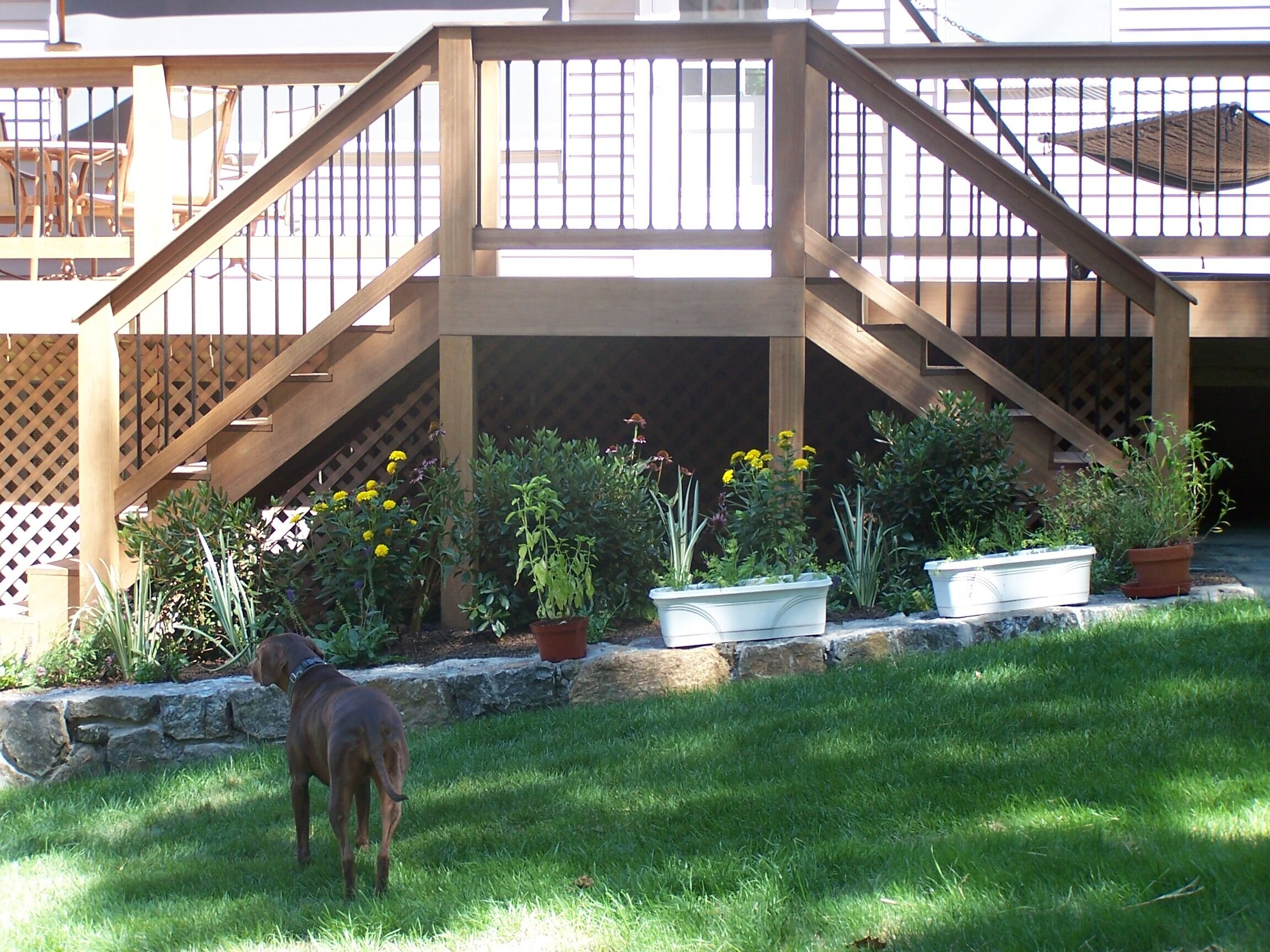 Property Maintenance Tips For Maintaining A Healthy Lawn