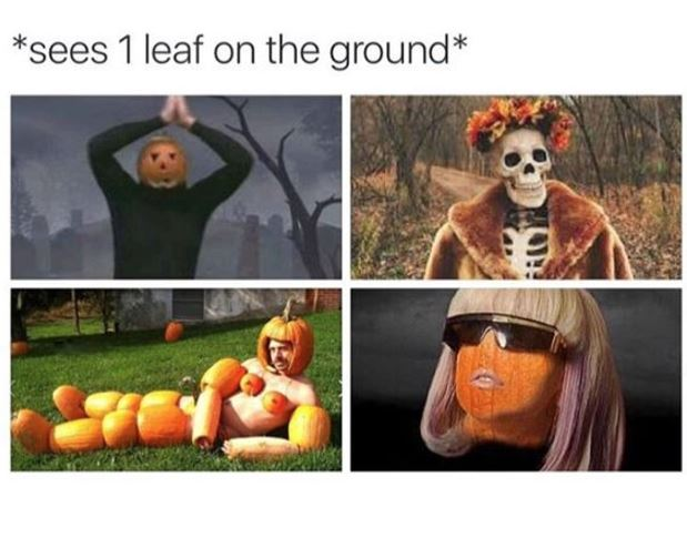 happy its fall meme.JPG