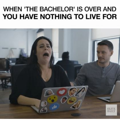 the bachelor is over.JPG