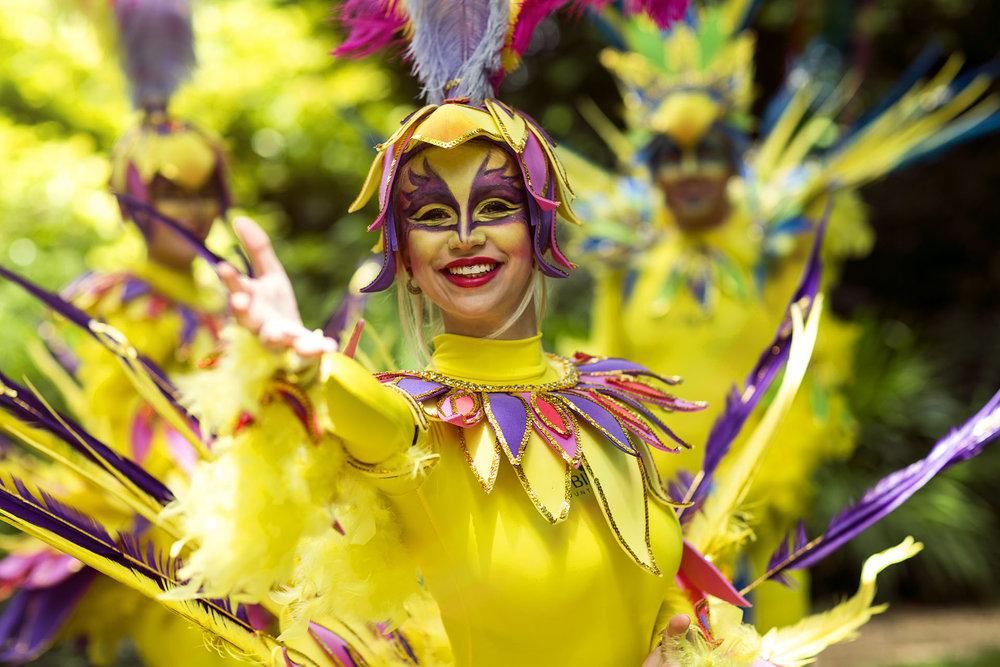 Robin Hill Carnival.jpg