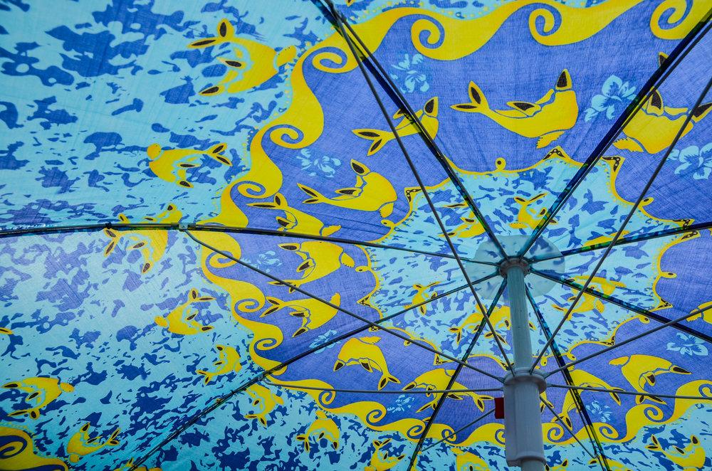 parasol_14499462716_o.jpg