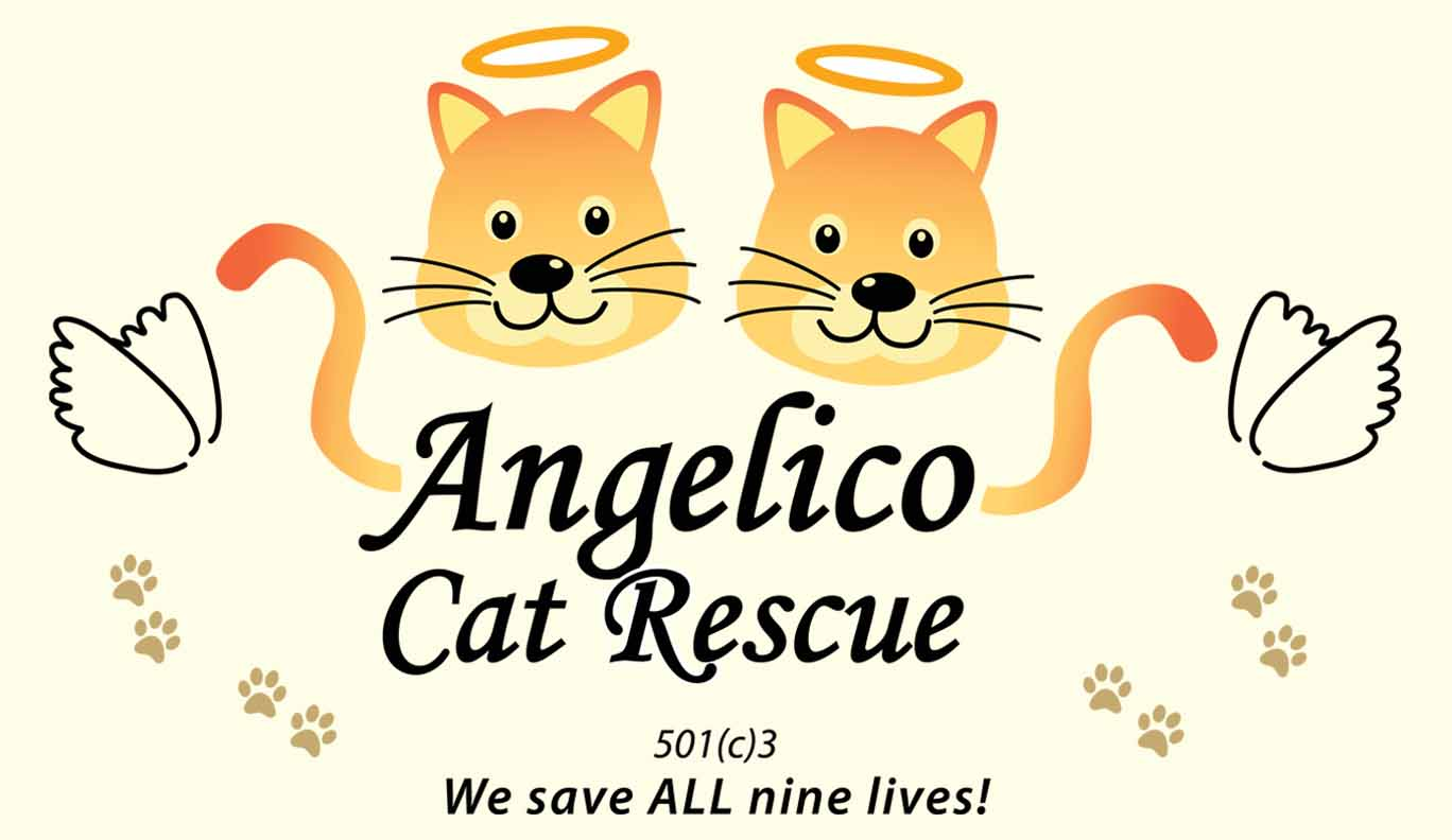 Angelico Cat Rescue