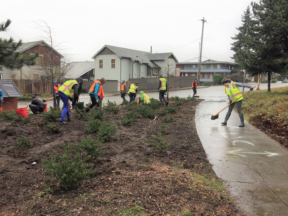 Volunteers helped clean up the site after removing invasive weeds in the Wallingford neighborhood of Seattle.   |   Image of  Wallingford Work Party  via  Trees for Seattle .