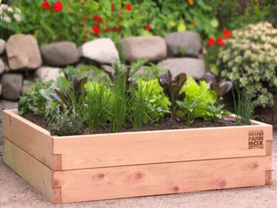 Raised Garden Bed.jpg
