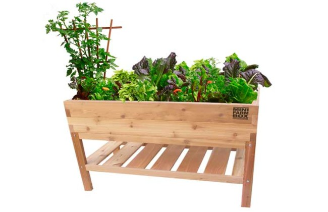 Elevated Table Garden