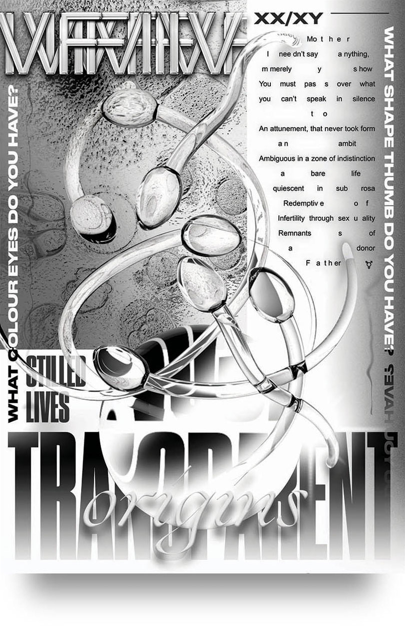Trans(parent) Origins  Poster, typography