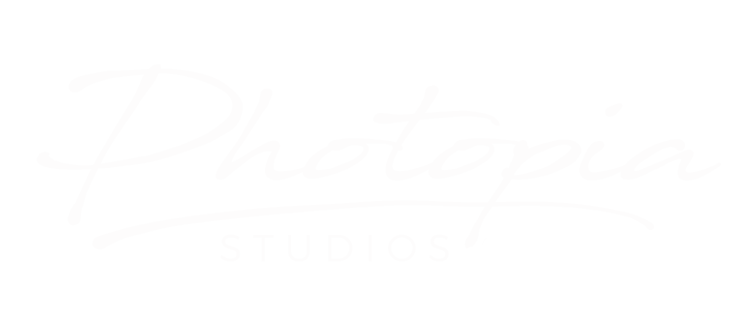 Photopia Studios Utah Wedding Photographer