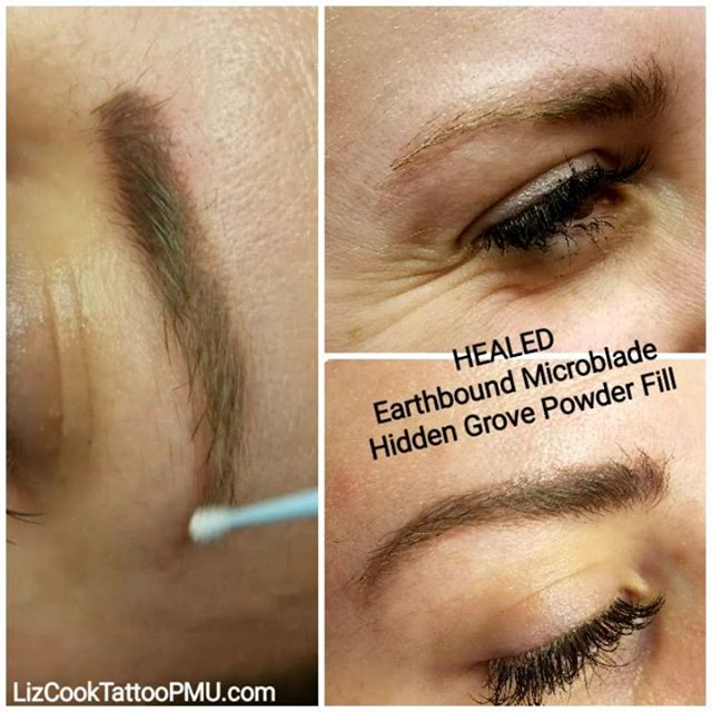 Before & Healed Brows