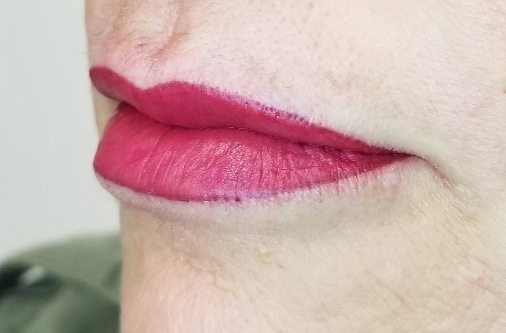 Liz Cook PMU AG Lips.jpg