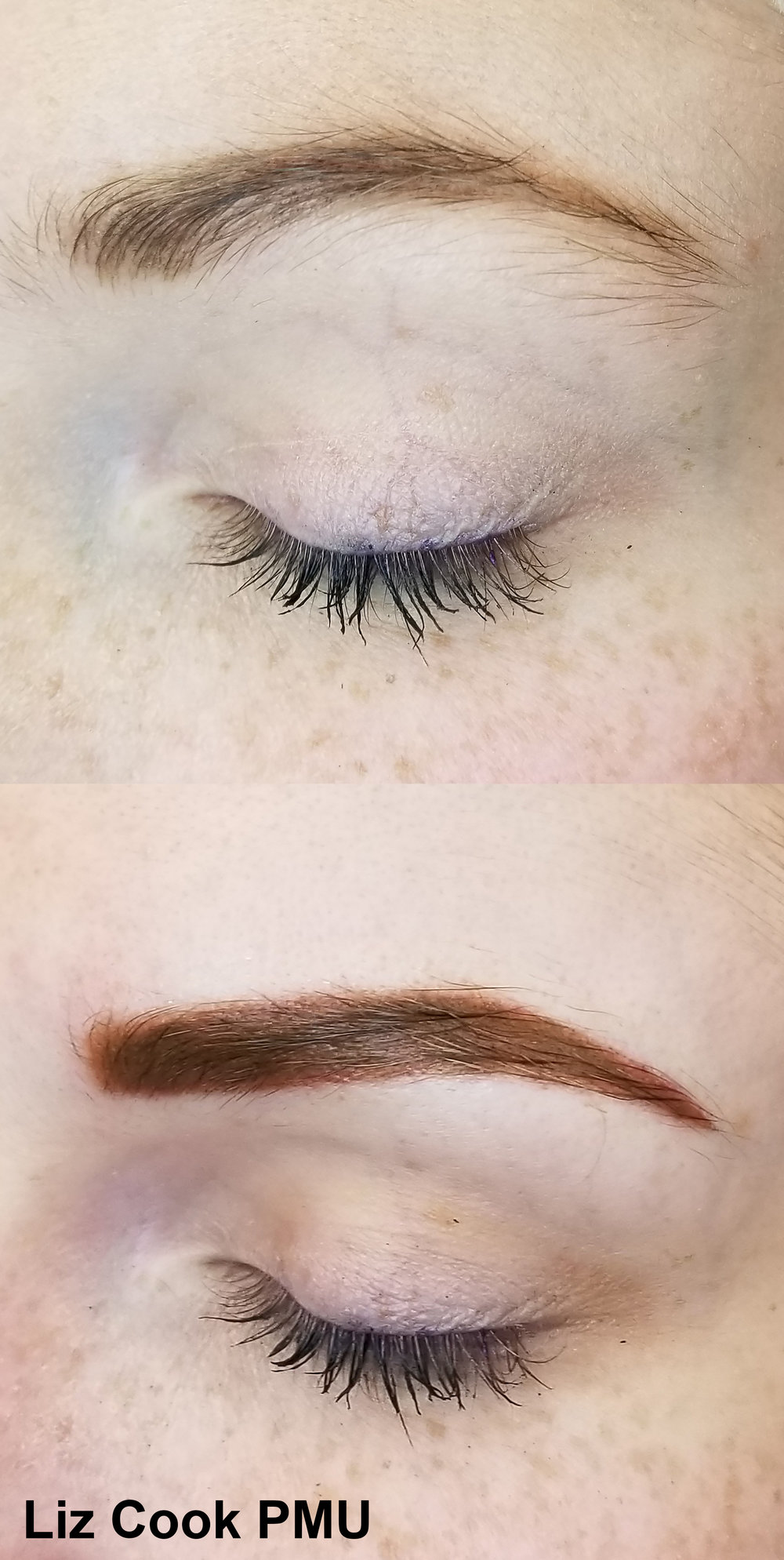 Liz Cook PMU EM Dark Strawberry Blonde Brows Side Dallas TX Permanent Cosmetics.jpg