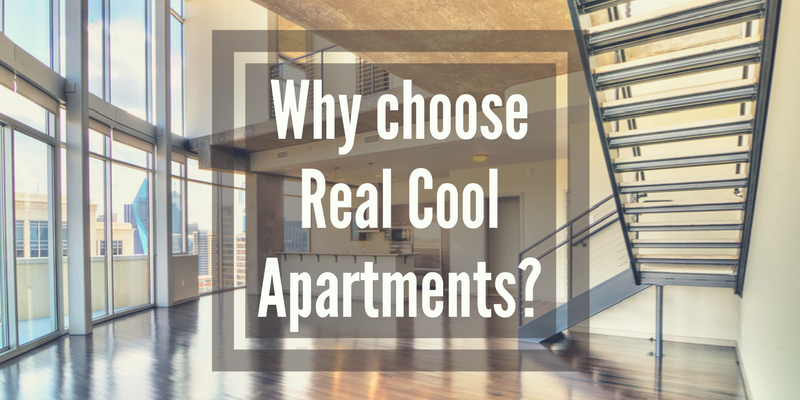 Real Cool Apartments