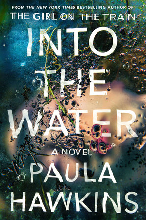 review of into the water