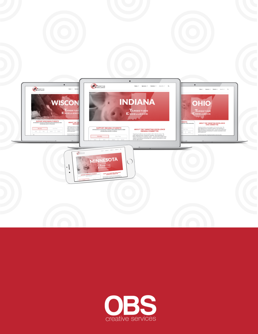 Targeting Excellence Website Banners@300x-8.png