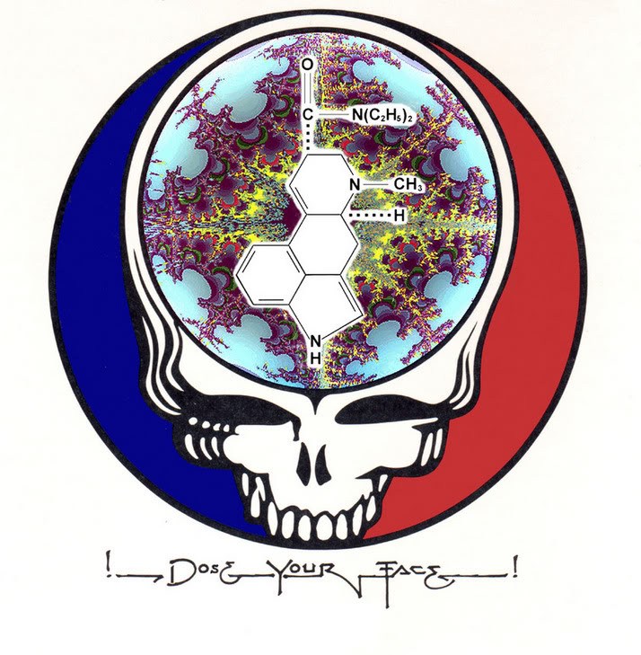 An LSD-ified Steal Your Face design that could honestly have doubled as this book's cover.