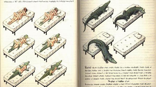 alcune_delle_illustrazioni_del_codex_seraphinianus_9799.jpg