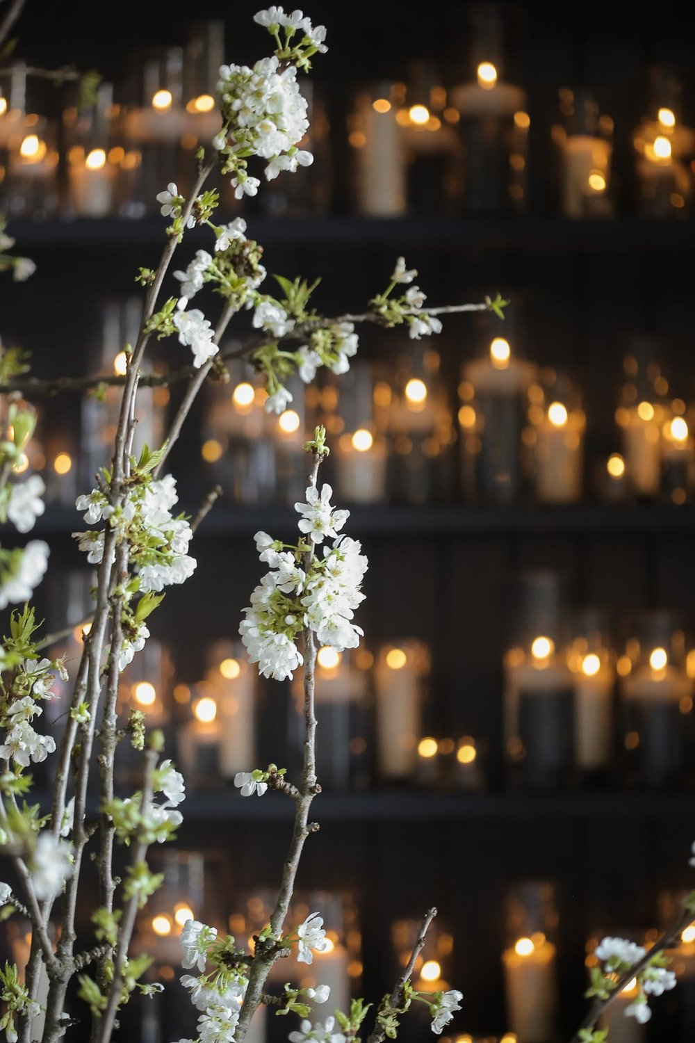 romantic-wedding-ceremony-cherry-blossoms-at-weddings-utah-weddings_pepper_nix_photography-39.jpg