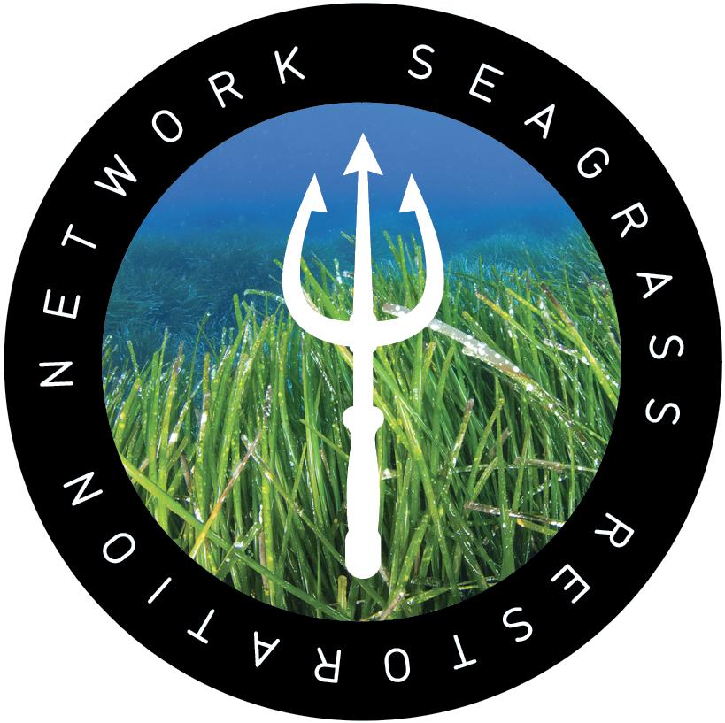 SRN-Logo