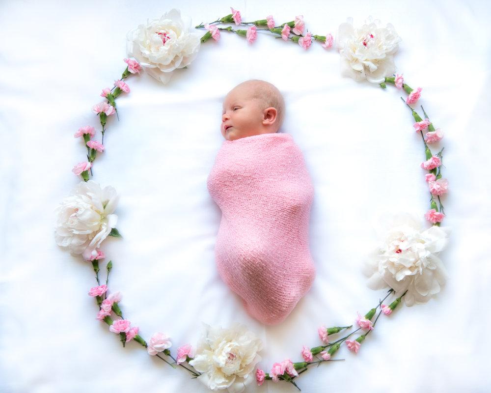 paisley_newborn--2.jpg