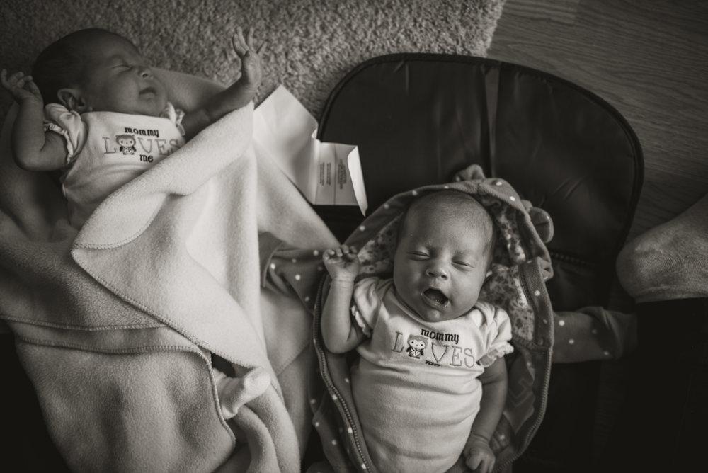 Laura Olson Photography - Nievelina - Newborns - Nova and Luna - December 2016-1466-2.jpg