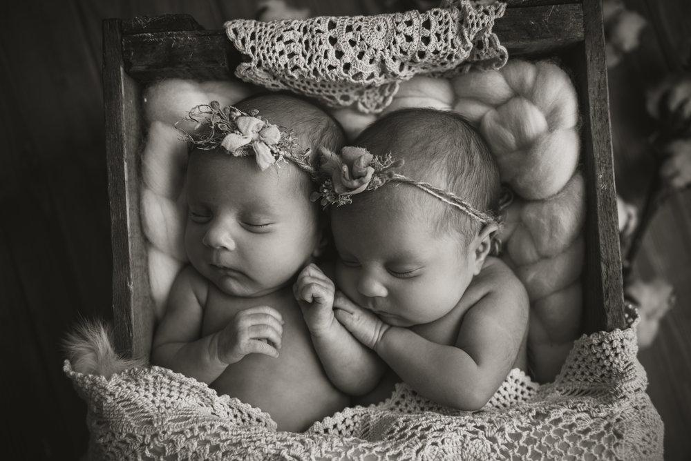 Laura Olson Photography - Nievelina - Newborns - Nova and Luna - December 2016-1483-2.jpg