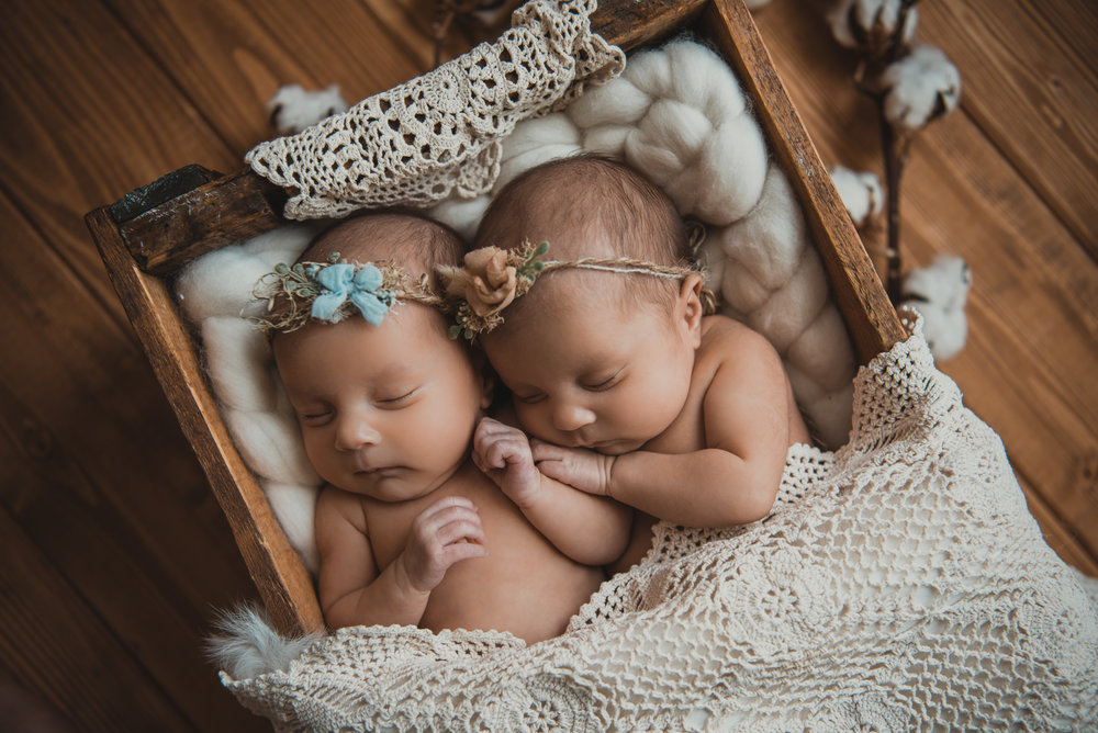Laura Olson Photography - Nievelina - Newborns - Nova and Luna - December 2016-1484-2.jpg