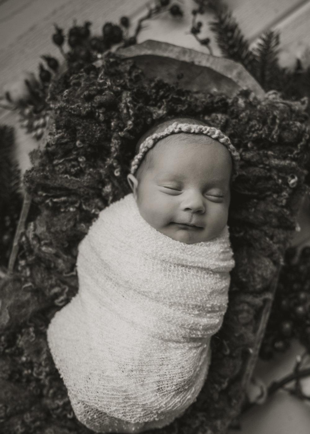 Laura Olson Photography - Nievelina - Newborns - Nova and Luna - December 2016-1640-2.jpg
