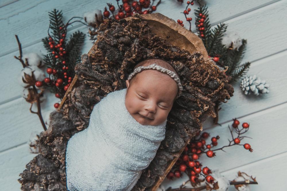 Laura Olson Photography - Nievelina - Newborns - Nova and Luna - December 2016-1644-2.jpg
