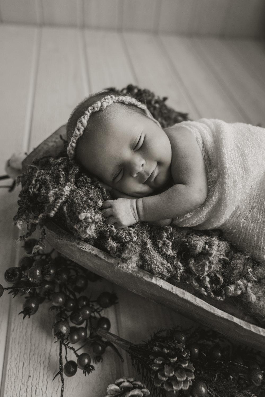 Laura Olson Photography - Nievelina - Newborns - Nova and Luna - December 2016-1658-2.jpg
