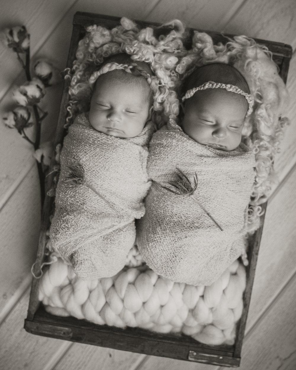 Laura Olson Photography - Nievelina - Newborns - Nova and Luna - December 2016-1689-2.jpg