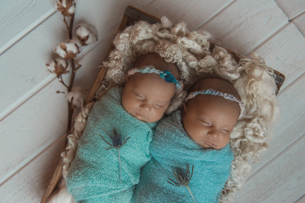 Laura Olson Photography - Nievelina - Newborns - Nova and Luna - December 2016-1693-2.jpg