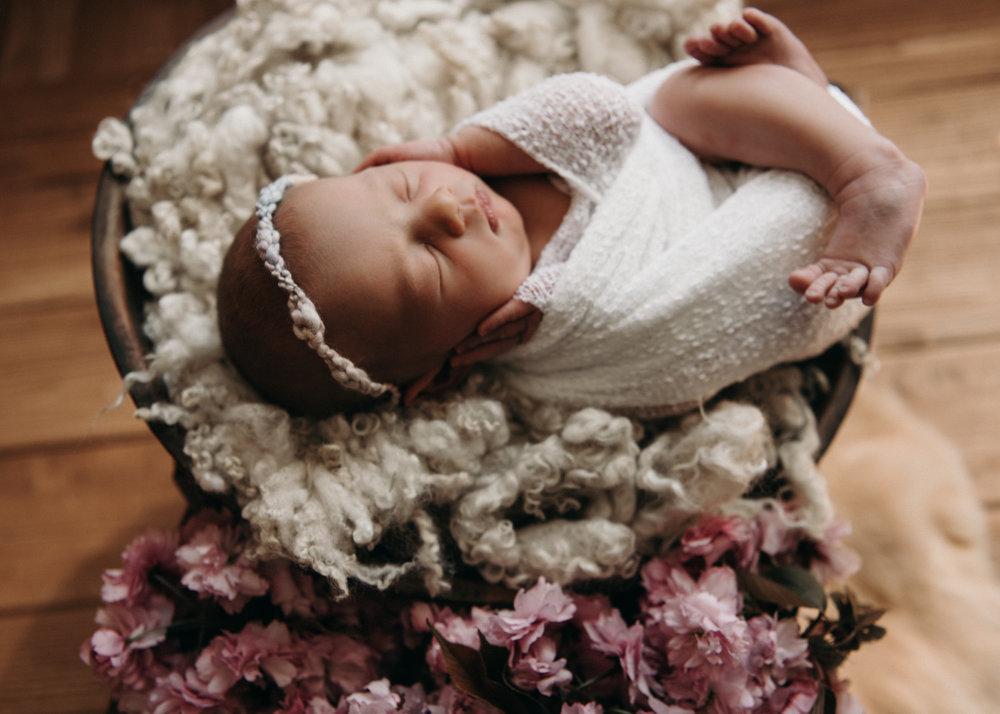 Tessa Newborn Photos - Sunshine Coast BC Photographer - Laura Olson Photography-4631.jpg