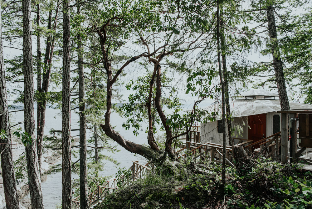 Ashley + Jeff - Rockwater Resort Elopement - Sunshine Coast BC Photographer - Laura Olson Photography-3852.jpg