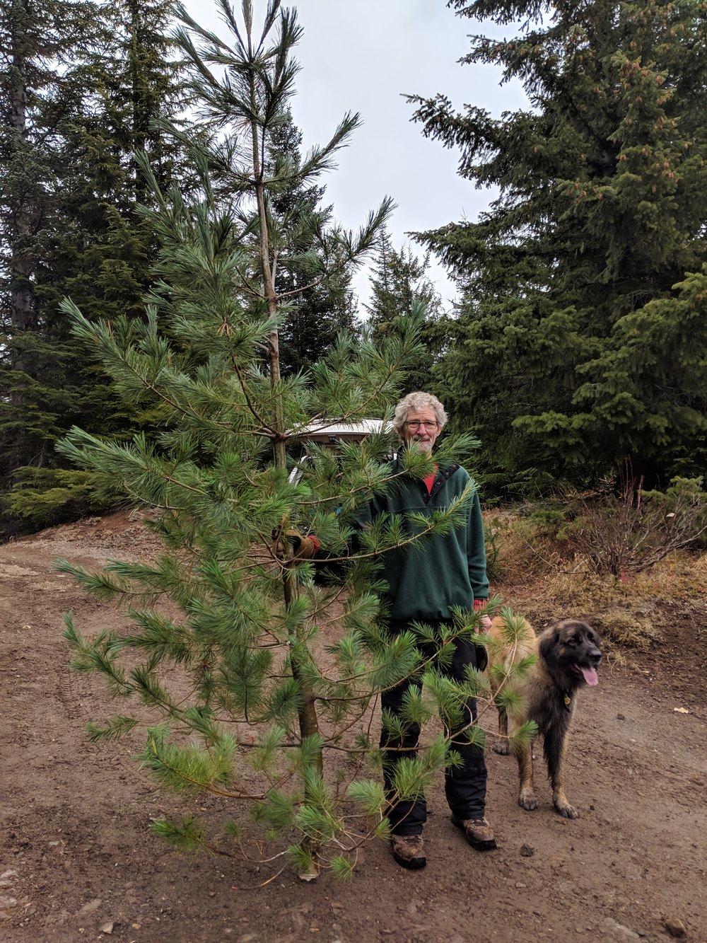 John, Daphne, and the tree.