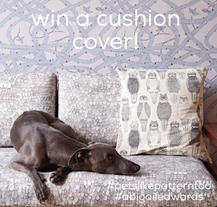win-a-cushion-cover