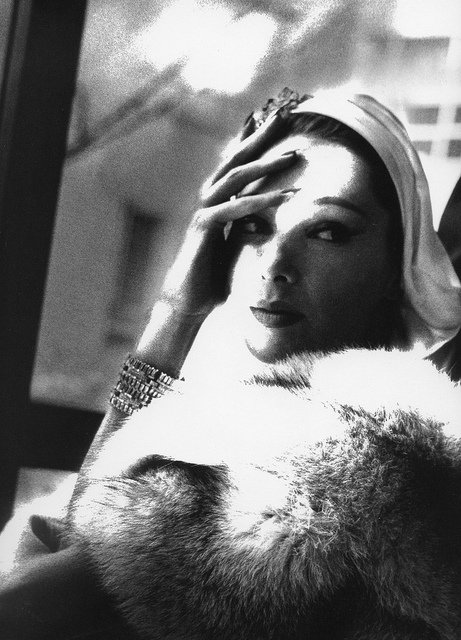 Marilyn Ambrose.