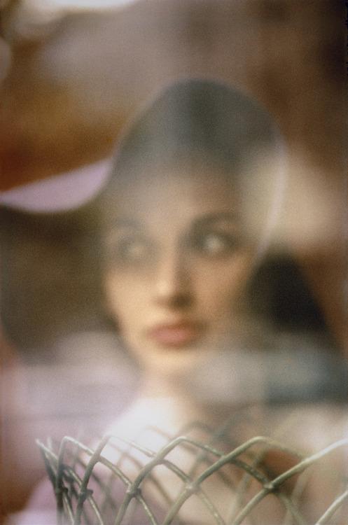 Carol Brown, par Saul Leiter.