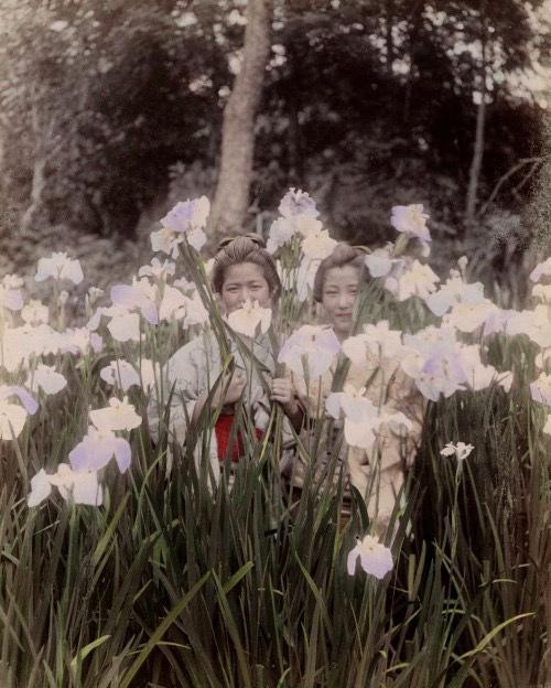 Modèle & photographe inconnus [1887]