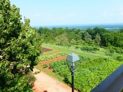 A+CollegeConsultants-Virginia-Countryside