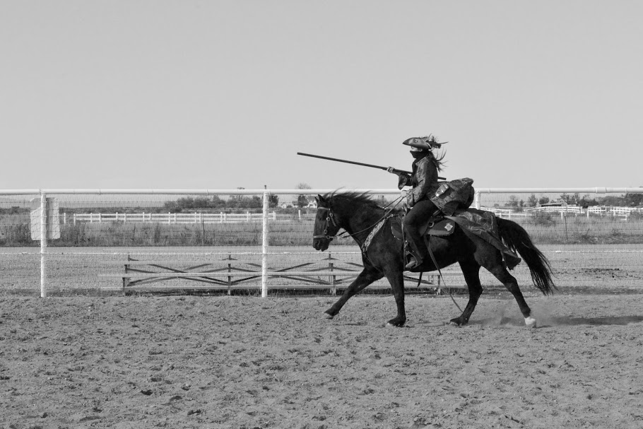 SW Horse4.jpg