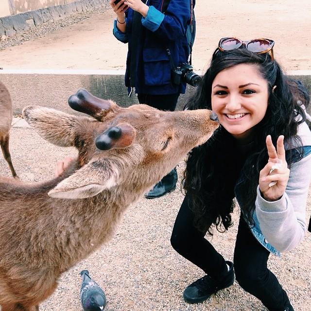 Nara_Deer_Park.jpg