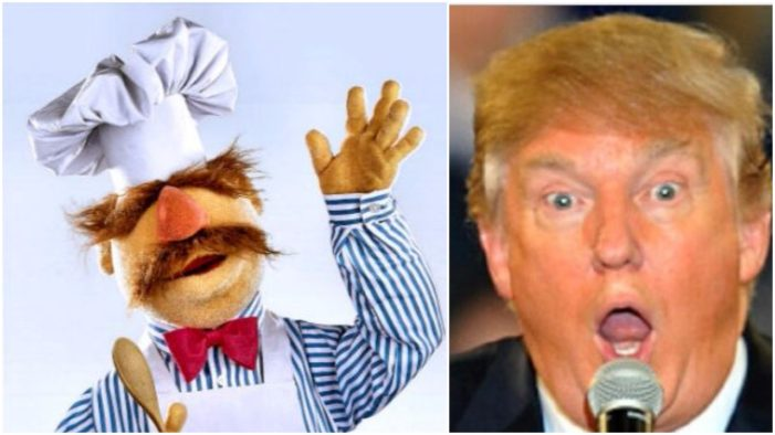 swedish-chef-trump-701x394.jpg
