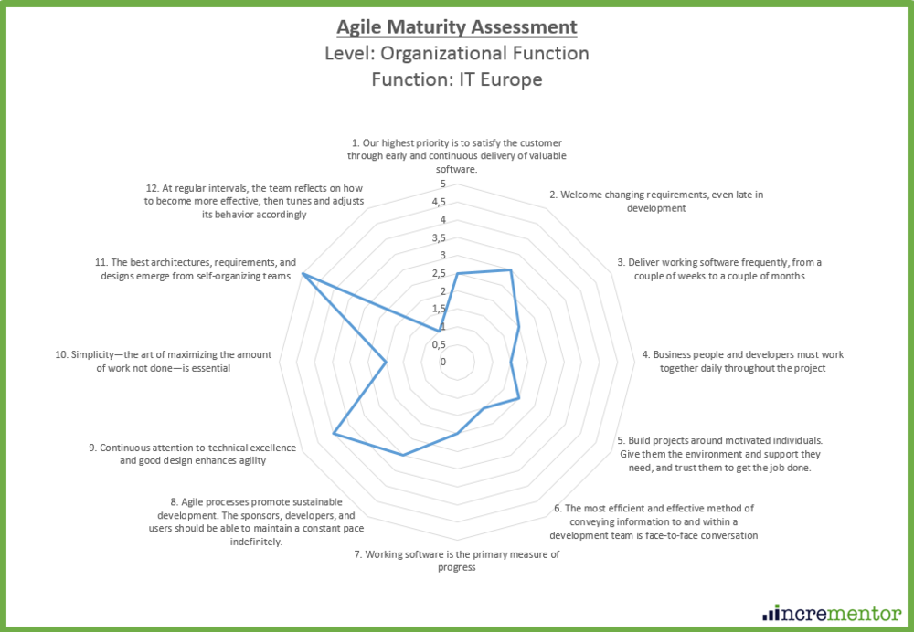 Agile Maturity Assessment Framework Organizational Function Level.png
